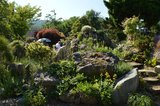 Gartenbesichtigungsfahrt 2019 023.jpg