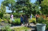Gartenbesichtigungsfahrt 2019 039.jpg