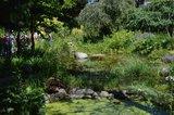 Gartenbesichtigungsfahrt 2019 045.jpg